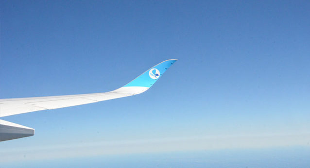 aile-droite-A350-French-Blue